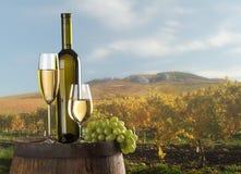 Stilleven met witte wijn Royalty-vrije Stock Fotografie