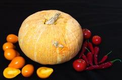 Stilleven 1 Rijpe groenten op een donkere achtergrond Royalty-vrije Stock Afbeeldingen