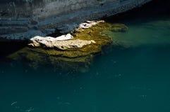 Stilleven 1 Rots in rivier stock afbeeldingen