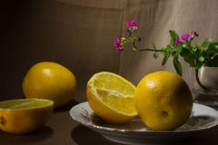Stilleven 1 Sinaasappelen en bloem in een glas Royalty-vrije Stock Afbeeldingen