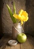 Stilleven - tulp en appel stock fotografie