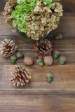 Stilleven van denneappels, okkernoten, eikels en een vaas met greens Stock Foto's