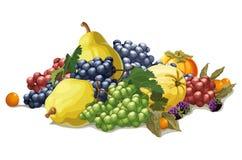Stilleven van druiven en kweepeer vector illustratie