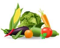Stilleven van groenten vectorillustratie Royalty-vrije Stock Foto