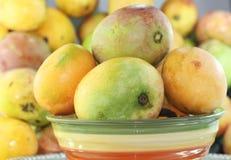 Stilleven van rijpe mango's Stock Fotografie