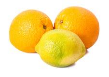 Stilleven van rijpe sinaasappelen en citroen Stock Afbeeldingen