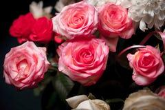 Stilleven van roze boeketbloem Mooie verse roze rozen Rose Posy Wedding Bouquet hoop van roze en witte verse rozen Royalty-vrije Stock Afbeeldingen