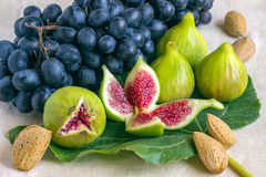 Stilleven van verse kleurrijke vruchten Bos van zwarte druiven, gree Royalty-vrije Stock Afbeelding
