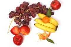 Stilleven van verse vruchten Royalty-vrije Stock Afbeelding