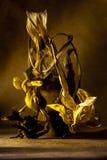 Stilleven vernietigde bloemen in bruine tonen Royalty-vrije Stock Foto