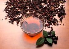Stillevenkop van zwarte thee met muntbladeren op de droge achtergrond van de karkadethee Royalty-vrije Stock Afbeelding