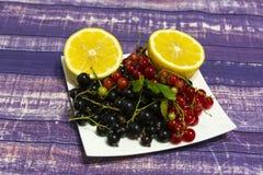 Stillevenzwarte, rode aalbes en de twee helften van citroen royalty-vrije stock afbeelding