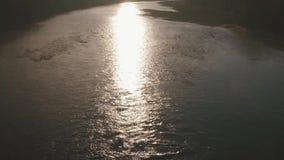 Stillhet och mystisk dimmig morgon över flodlandskapet Soluppgång och grå dimmig bakgrund arkivfilmer