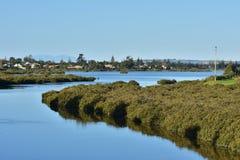 Stillhetvatten av breda flodmynningen Royaltyfria Bilder
