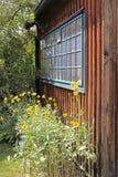 Stillife avec les fleurs et la fenêtre dans la vallée image libre de droits