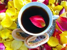 Stillife di mattina con i petali dei multicolores fotografia stock libera da diritti