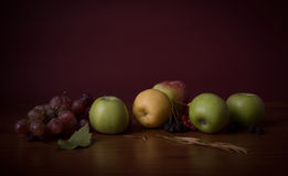 Stillleben: Äpfel und Traube Lizenzfreie Stockbilder