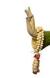Stillleben-, Buddha-Hand und Blume auf weißem Hintergrund, Lizenzfreies Stockfoto