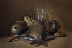 Stillleben, das Fische salzt Lizenzfreie Stockbilder