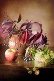 Stillleben in der Weinleseart mit wilden Trauben, Apfel, Krug und Hopfen auf einer hölzernen dunklen Tabelle Lizenzfreie Stockfotografie