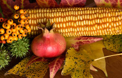 Stillleben des Herbstes Lizenzfreie Stockbilder