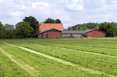 Stillleben des trocknenden Heus, Bauernhof in der niederländischen Landschaft Lizenzfreie Stockfotografie