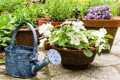 Stillleben in einem Garten Lizenzfreie Stockfotos