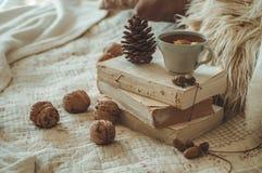 Stillleben im Hauptinnenraum des Wohnzimmers Strickjacken und Tasse Tee mit einem Kegel auf den Büchern gelesen Gemütliches Herbs lizenzfreie stockbilder