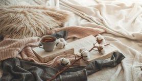Stillleben im Hauptinnenraum des Wohnzimmers Strickjacken und Tasse Tee mit einem Kegel auf den Büchern gelesen Gemütliches Herbs lizenzfreies stockfoto
