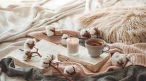 Stillleben im Hauptinnenraum des Wohnzimmers Strickjacken und Tasse Tee mit einem Kegel auf den Büchern gelesen Gemütliches Herbs stockfoto