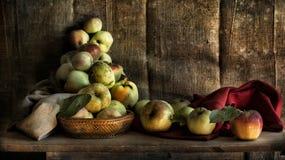 Stillleben mit Äpfeln Lizenzfreies Stockbild