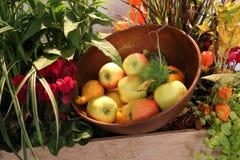 Stillleben mit Äpfeln und Kürbisen Lizenzfreie Stockbilder