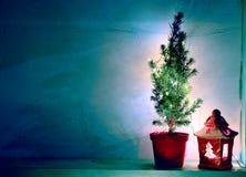 Stillleben mit blauer Kopienraumwand, natutal Nadelbaum und Laterne stockfoto