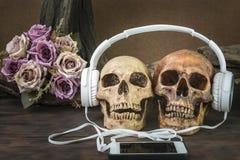 Stillleben mit dem Paarschädel, der Musik hört Stockfotografie