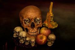 Stillleben mit dem Schädel Stockfotografie