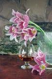 Stillleben mit einem Glas Weinbrand und Blumen Stockfotografie