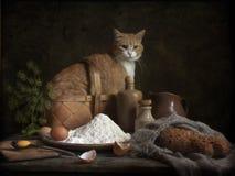 Stillleben mit einer Katze und einem Brot Stockfotos