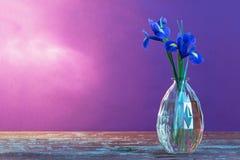 Stillleben mit Frühling floweras im Vase Lizenzfreie Stockfotos