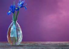 Stillleben mit Frühlingsblumen Stockbilder