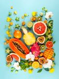 Stillleben mit frischen sortierten exotischen Fr?chten und Blumen lizenzfreie stockbilder