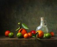 Stillleben mit Frucht und Krug lizenzfreies stockbild