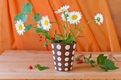 Stillleben mit Gänseblümchenblumen und roter Johannisbeere lizenzfreie stockfotos