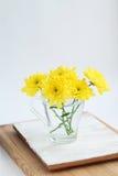 Stillleben mit gelben Chrysanthemen in einem Glas Stockfoto