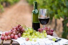 Stillleben mit Glas Rotwein und Trauben stockbilder