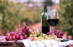 Stillleben mit Glas Rotwein und Trauben stockfotos