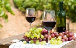 Stillleben mit Glas Rotwein und Trauben stockfotografie