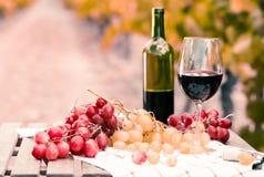 Stillleben mit Glas Rotwein und Trauben lizenzfreies stockfoto