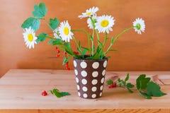 Stillleben mit Gänseblümchenblumen und roter Johannisbeere Stockfotos