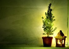 Stillleben mit grünem Nadelbaum-, Laternen- und Kopienraum stockbilder