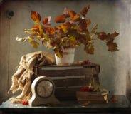 Stillleben mit Herbstlaub Lizenzfreie Stockfotografie